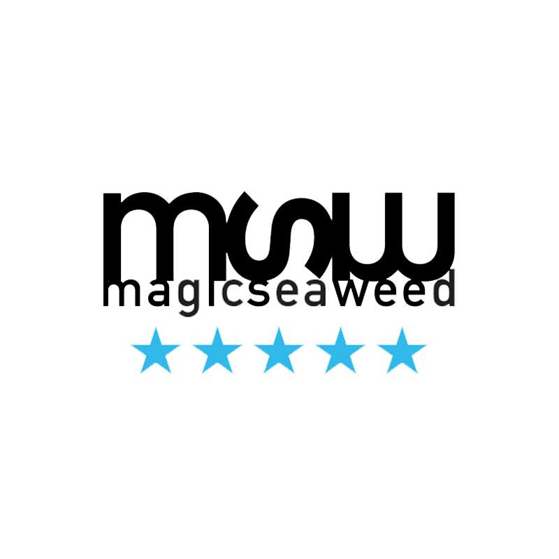 magicseaweed logo