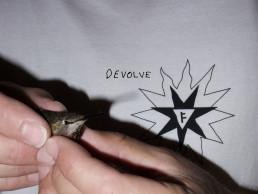 Former Devolve Collection
